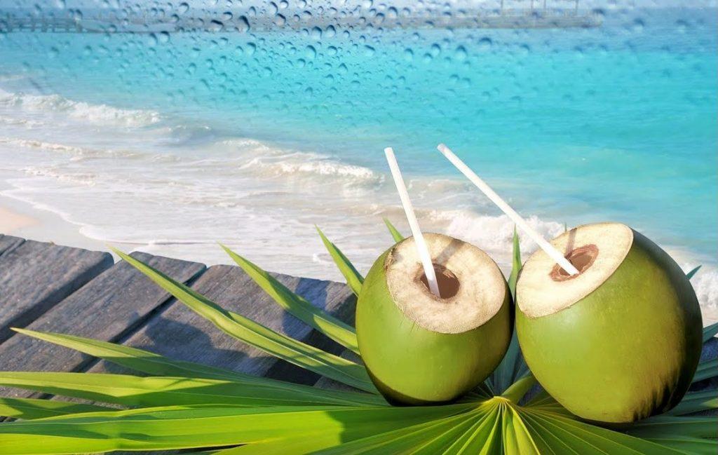 кокосовая вода для почек