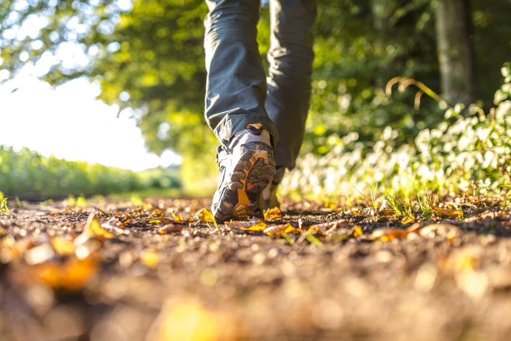прогулки как лечение спортивной аддикции