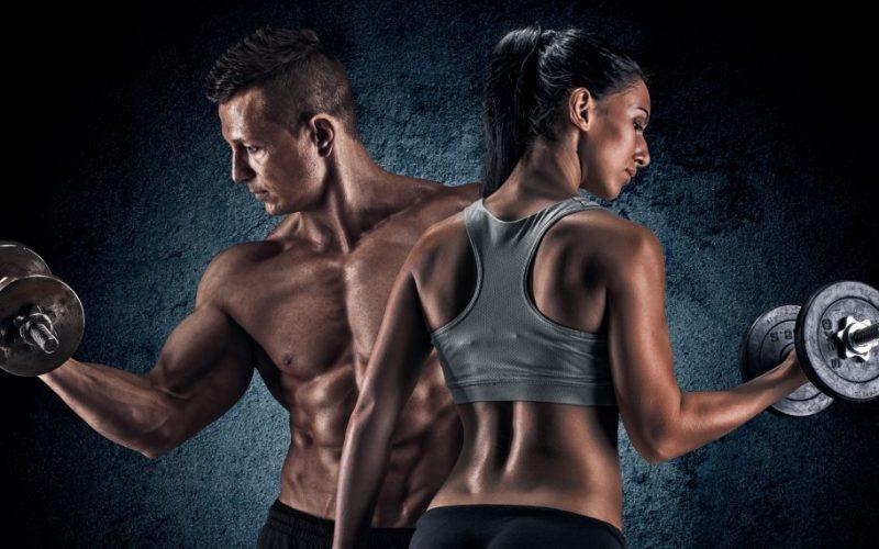 какой вид тренировок выбрать - силовые тренировки