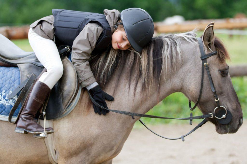 чему начат лошади детей в конном спорте