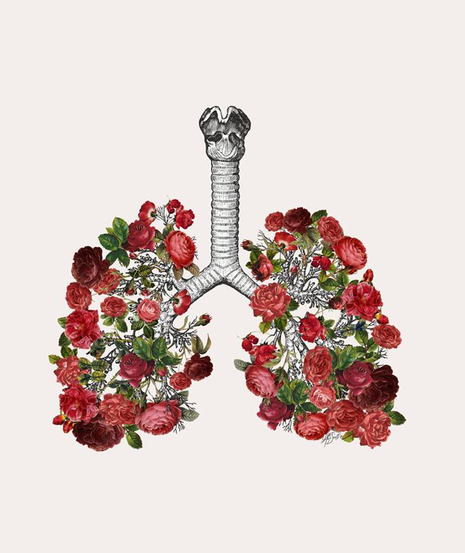 отсутствие одышки и налажено система кровообращения - главные преимущества дыхательных упражнений