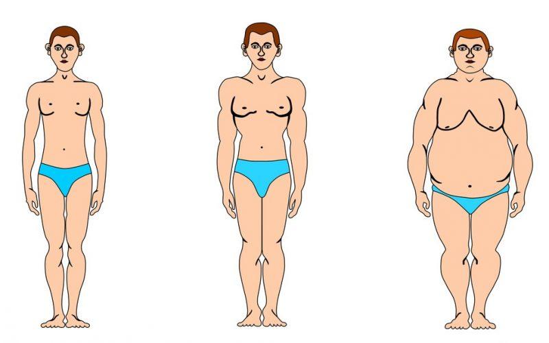 Как похудеть эндоморфу? – диета, упражнения, советы